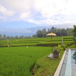 Foto van Hati Padi Cottages