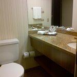 Sao Paulo Airport Marriott Hotel照片