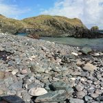 Photo de Cadgwith Cove Inn