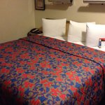 Bilde fra Red Roof Inn Greenville
