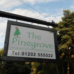 Photo of The Pinegrove