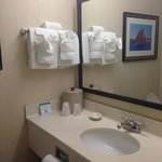 Bilde fra Holiday Inn Hotel & Suites Historic Distr