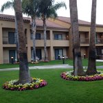 Outside our room/patio...beautiful courtyard, easily accessible!