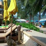 Kamala Beachfront Apartment의 사진