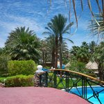 Maritim Jolie Ville Golf & Resort Sharm El Sheikh照片