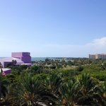 Photo de Hyatt Regency Sarasota
