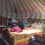 Foto de Mill Valley Yurts