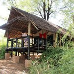Samburu Intrepids Luxury Tented Camp resmi