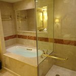The bathtub and shower area