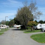 Mad River Rapids RV Park照片