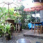 Foto Coconut Hostel