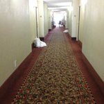 Clarion Hotel National Harbor resmi