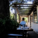 Shady eating area out front