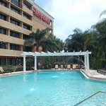 Φωτογραφία: Sheraton Orlando North