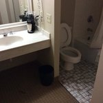Foto van La Quinta Inn & Suites Minneapolis Bloomington W