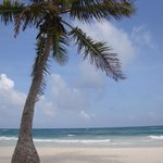The Beach Tulum Foto