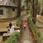 Mountain Resort, Khali Estate의 사진