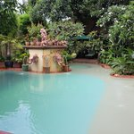 Ganesha Swimming Pool with total green surrounding