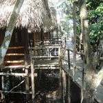 Tariri Amazon Lodge照片