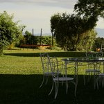 Agriturismo Il Quinto의 사진