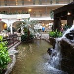 صورة فوتوغرافية لـ ‪Embassy Suites DFW Airport South - Irving‬