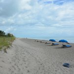 ภาพถ่ายของ Courtyard Hutchinson Island Oceanside / Jensen Beach