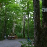 Camping on the Battenkill Foto