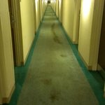 Extended Stay America - Detroit - Madison Heights Foto