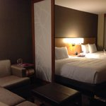 Hyatt Place Chicago / River North의 사진