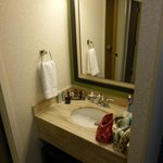 Ann Arbor Marriott Ypsilanti at Eagle Crest resmi