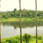 Foto de Karapuzha Village Resort