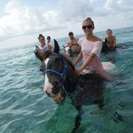 Best ocean ride...even the horse is smiling!