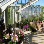 Conservatory in May