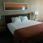 Foto de Holiday Inn Express San Francisco Airport South