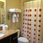 TownePlace Suites Lexington Park Patuxent River Naval Air Station resmi