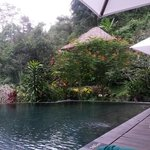 Foto Maya Ubud Resort & Spa