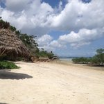 Mangrove Lodge Beach