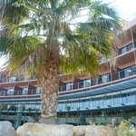 Pestana Vila Sol Golf & Resort Hotel의 사진
