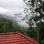 Foto di The Whispering Meadows Munnar