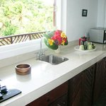 Rainforest Suite - Kitchenette