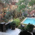 Garden and outdoor pool