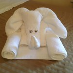 Creative housekeeping