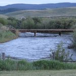 Laramie River Dude Ranch resmi