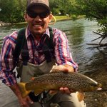 Provo River Brown Trout with Rocky Mountain Outfitters