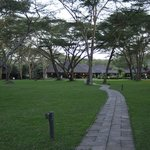 Lake Naivasha Simba Lodge resmi