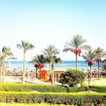 Bilde fra Sharm El Sheikh Marriott Resort
