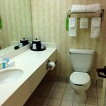 Hampton Inn & Suites Elmwood照片