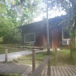 Foto de Ceiba Tops Lodge Explorama Lodges