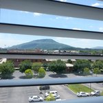 Foto Staybridge Suites Chattanooga Downtown