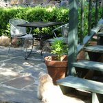 IMPERIAL HOTEL PATIO WITH CAT